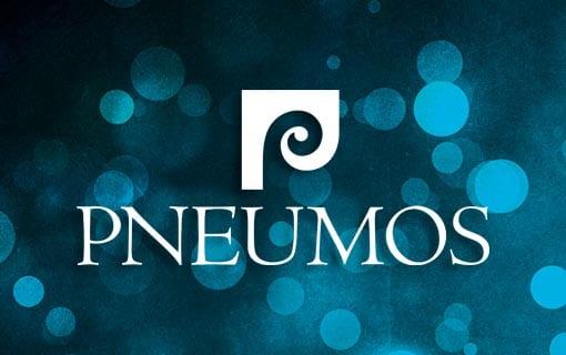 Design Formare Inc - Pneumos
